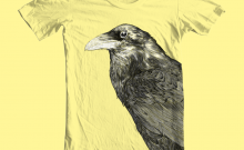 raven_light_yellow